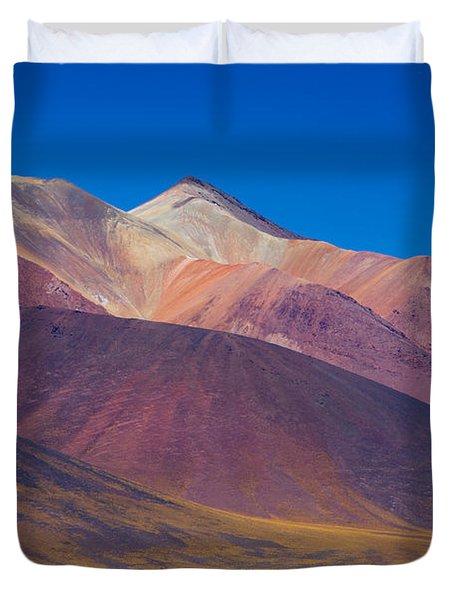 Painted Atacama Duvet Cover