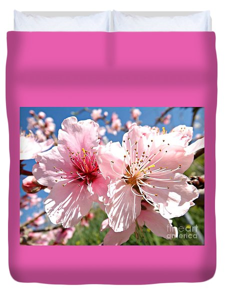 Peach Blossom Duvet Cover by Clare Bevan