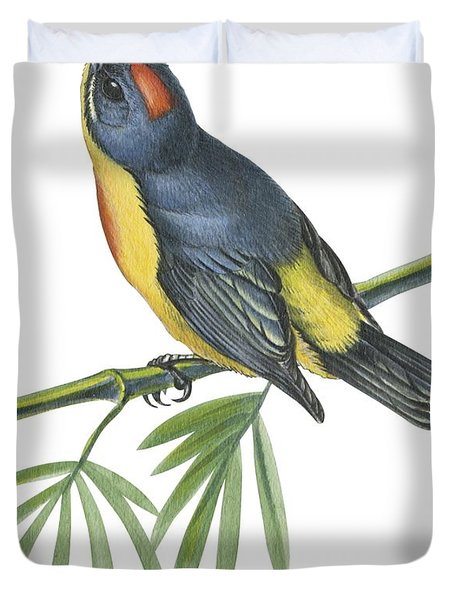Philippine Flowerpecker Duvet Cover by Anonymous