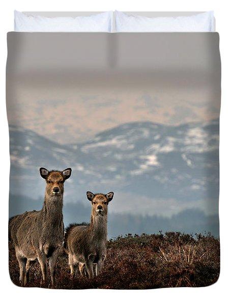Sika Deer Duvet Cover