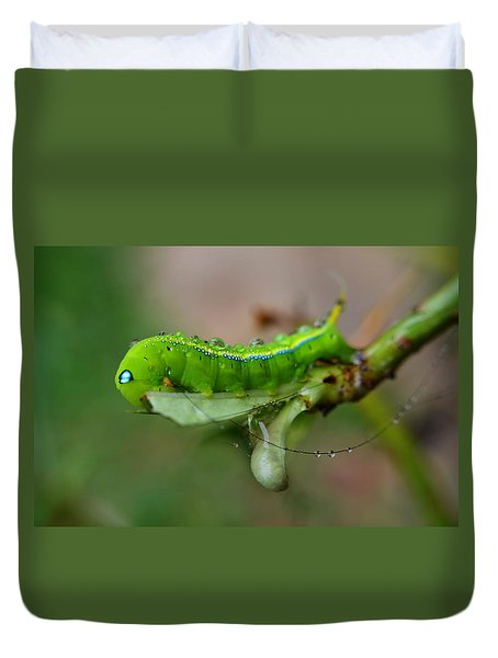 Duvet Cover featuring the photograph  Wet Caterpillar by Michelle Meenawong