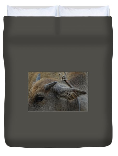 Duvet Cover featuring the photograph  Young Buffalo by Michelle Meenawong