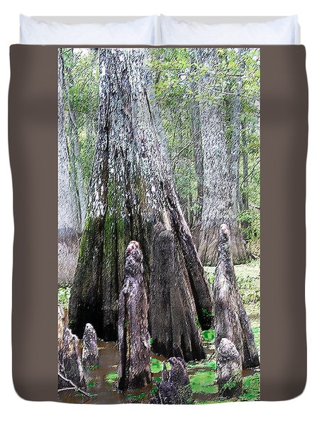 02102015 Honey Island Swamp Duvet Cover