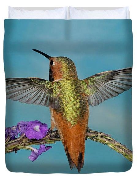 Allens Hummingbird Male Duvet Cover