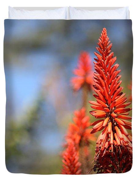 Aloe Succotrina  Duvet Cover by Nicholas Burningham