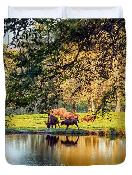 American Bison Duvet Cover by Sennie Pierson