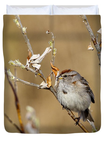 American Tree Sparrow Duvet Cover