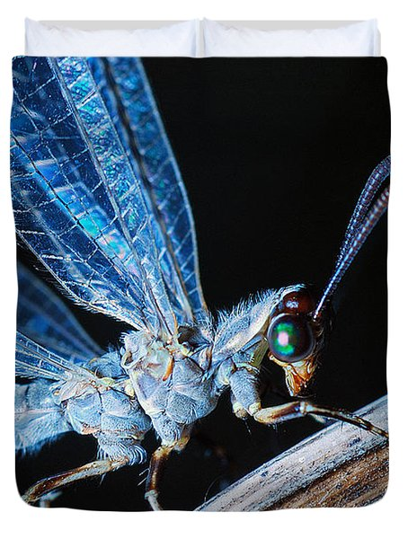 Antlion Duvet Cover
