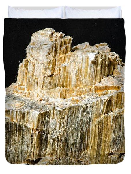 Asbestos Duvet Cover by Millard H. Sharp