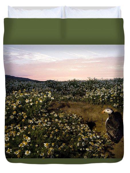 Atlantic Puffin At Burrow Skomer Island Duvet Cover by Sebastian Kennerknecht