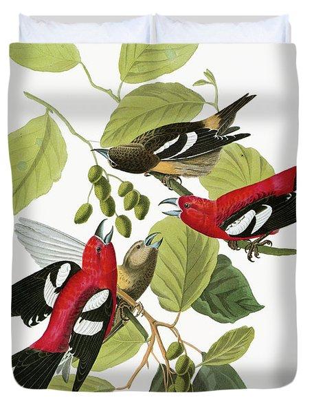 Audubon Crossbill Duvet Cover