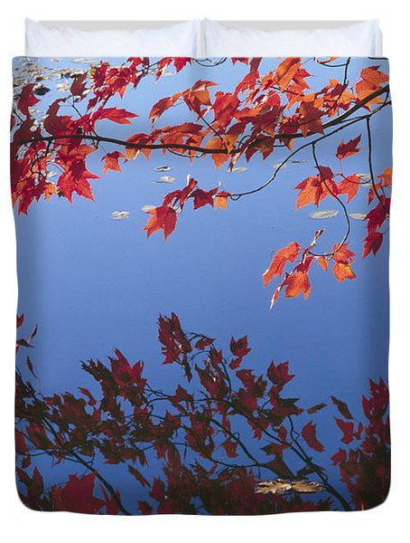 Autumn Blaze Duvet Cover