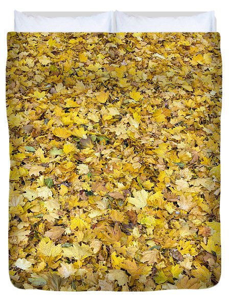Autumn Leaves Duvet Cover by Michal Boubin