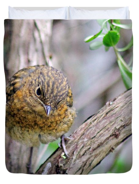 Baby Robin Duvet Cover by Tony Murtagh