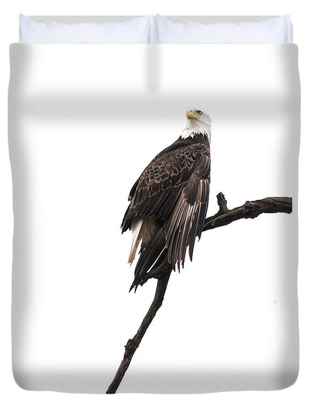 Bald Eagle 5 Duvet Cover