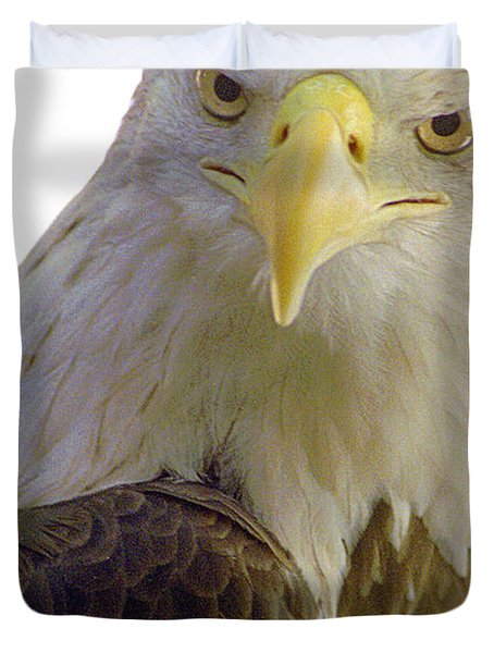 Bald Eagle Duvet Cover by Steve Archbold