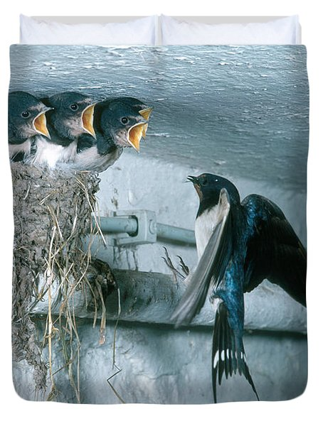 Barn Swallows Duvet Cover by Hans Reinhard