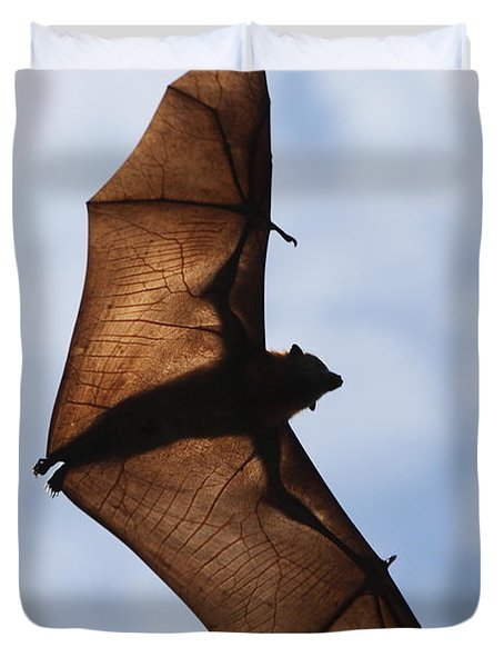 Bat Duvet Cover