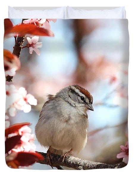 Beautiful Sparrow Duvet Cover