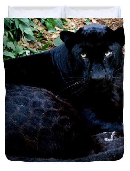 Black Leopard Duvet Cover by Mark Newman
