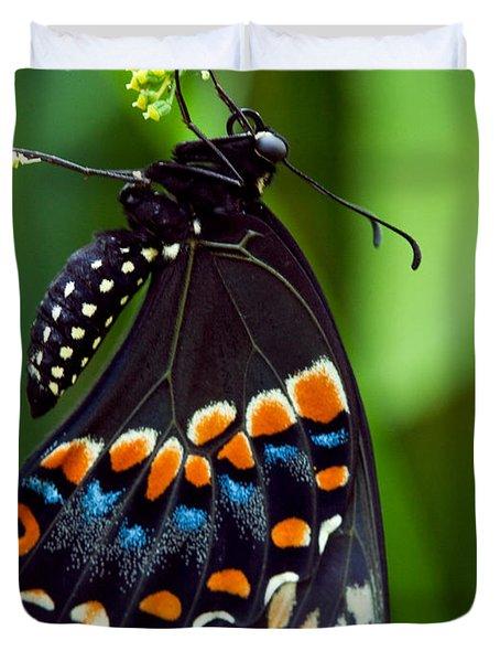 Black Swollowtail  Duvet Cover