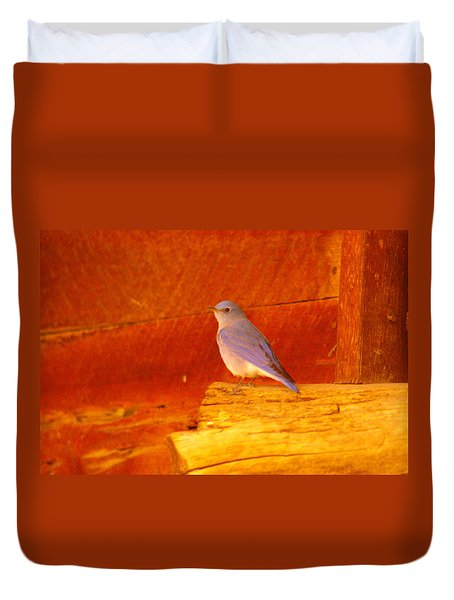 Blue Bird Duvet Cover by Jeff Swan