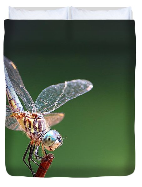 Blue Tailed Dragonfly Duvet Cover