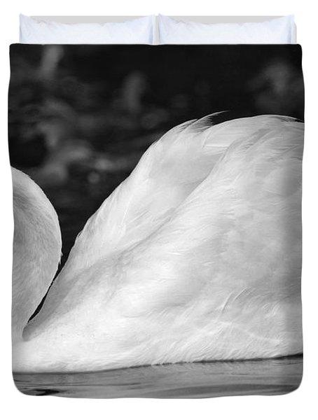 Boston Public Garden Swan Duvet Cover