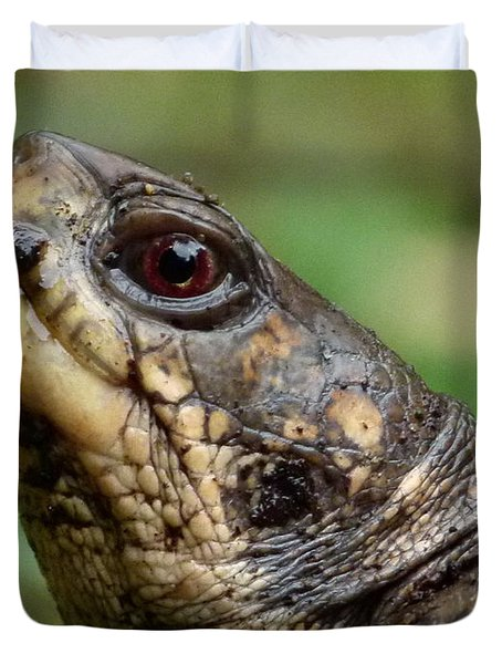 Box Turtle Duvet Cover