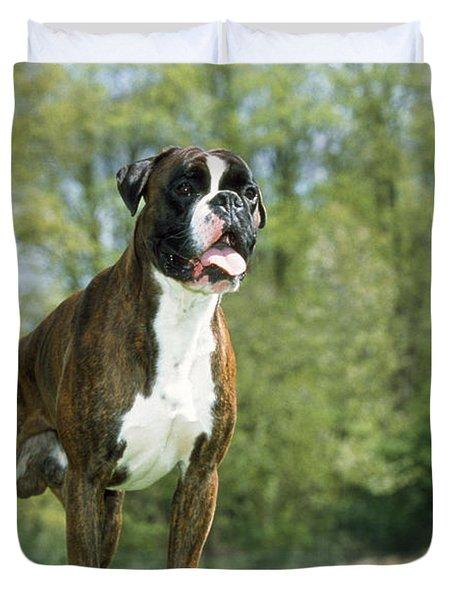Boxer Dog Duvet Cover by Johan De Meester