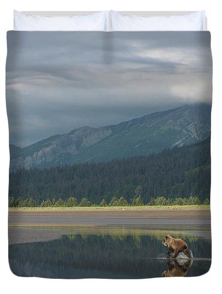 Brown Bear, Ursus Arctos, At Silver Duvet Cover