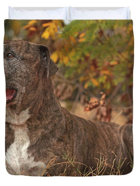 Bruno  Duvet Cover