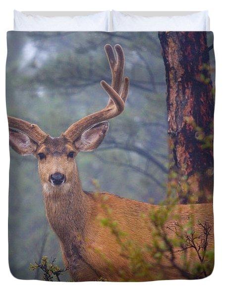 Buck Deer In A Mystical Foggy Forest Scene Duvet Cover