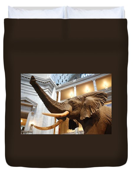 Bull Elephant In Natural History Rotunda Duvet Cover