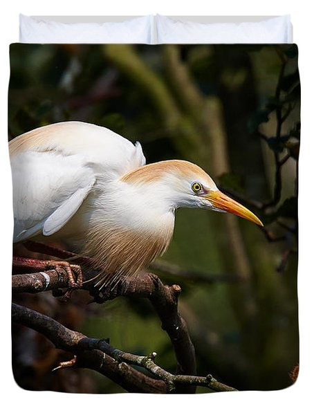 Cattle Egret In A Tree Duvet Cover