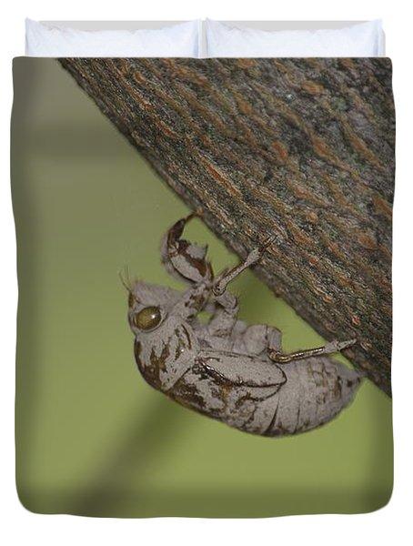 Cicada Duvet Cover