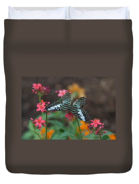 Clipper Butterfly 6150-052513-1cr Duvet Cover
