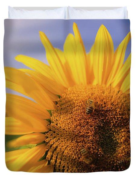 Close-up Of A Sunflower Helianthus Duvet Cover