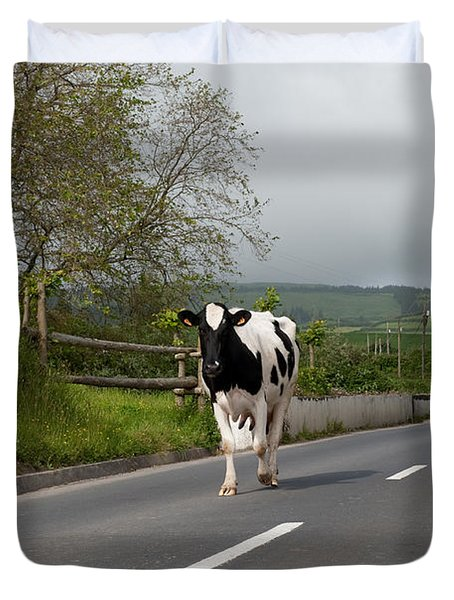 Cow Walks Along Country Road Duvet Cover
