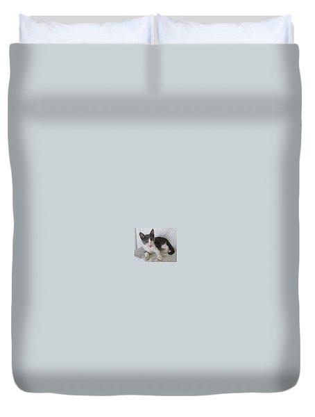 Crazy Cat Duvet Cover by Joann Renner