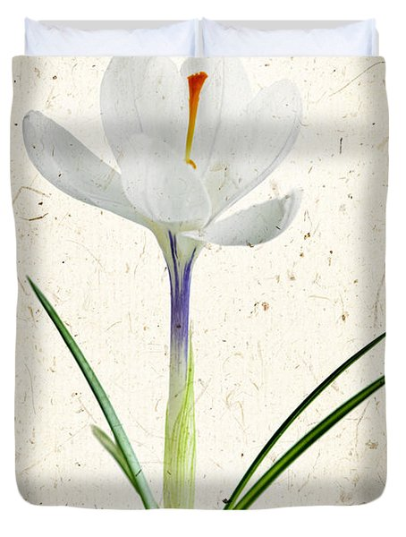 Crocus Flower Duvet Cover by Elena Elisseeva
