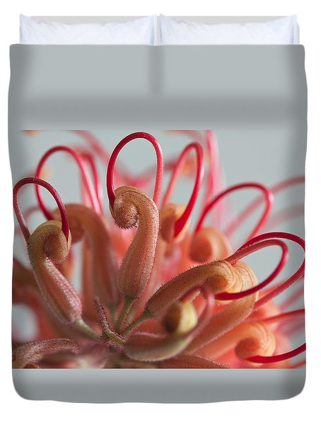 Duvet Cover featuring the photograph Curves by Shirley Mitchell