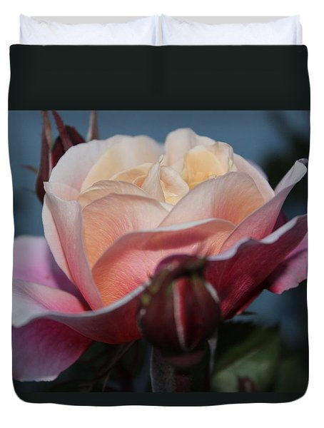 Distant Drum Rose Bloom Duvet Cover by Patricia Hiltz