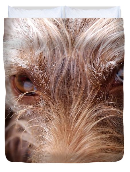 Dog Stare Duvet Cover