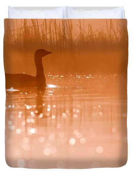Early Morning Magic Duvet Cover