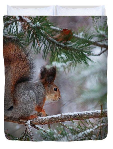 Eurasian Red Squirrel Duvet Cover