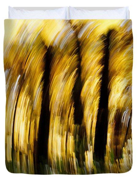 Fall Abstract Duvet Cover by Steven Ralser