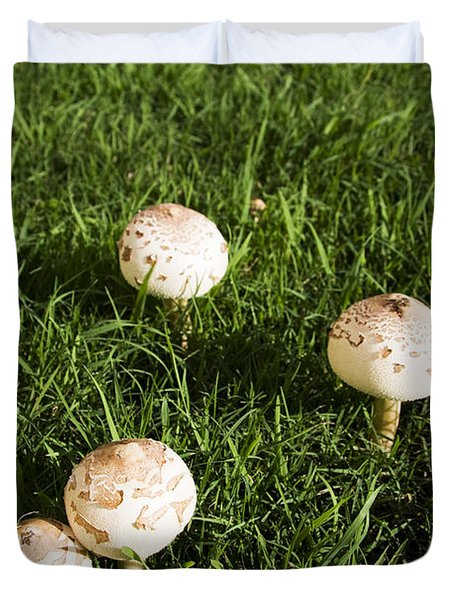 Field Of Mushrooms Duvet Cover by Jorgo Photography - Wall Art Gallery