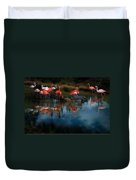 Flamingo Convention Duvet Cover by Melinda Hughes-Berland