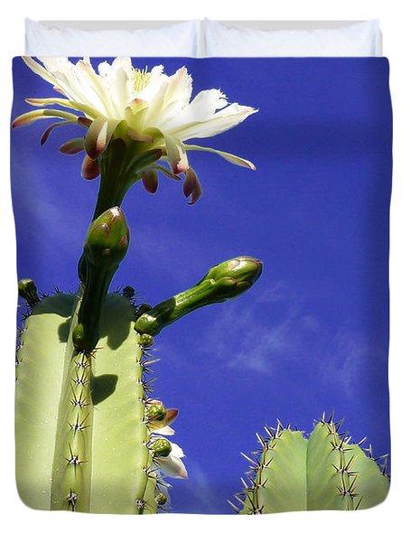 Flowering Cactus 2 Duvet Cover